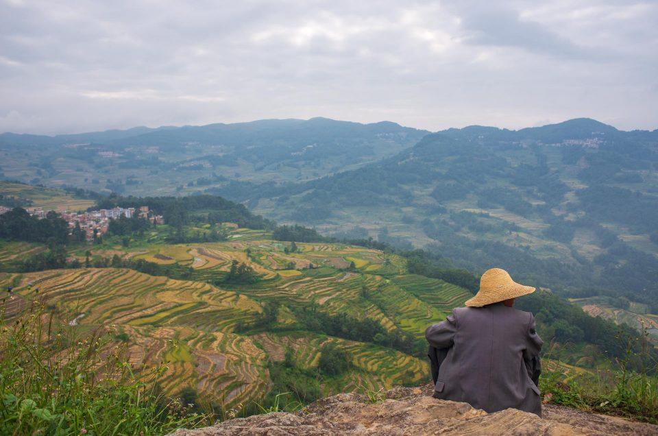 Yunnan : Les rizières de Yuanyang