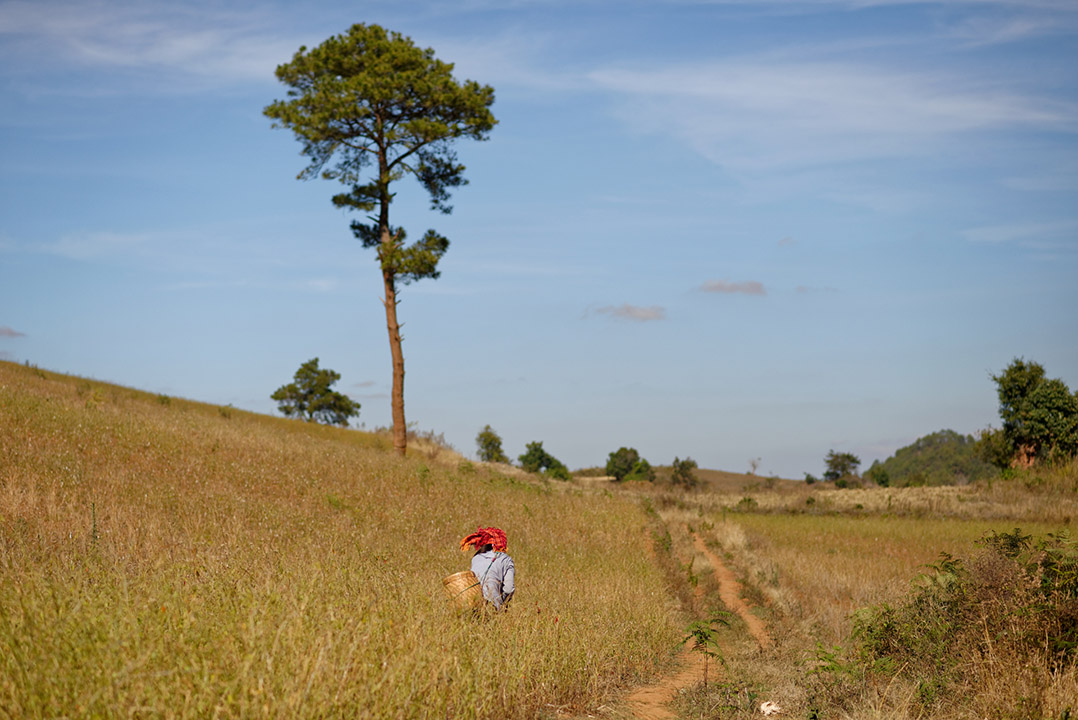 Kalaw Birmanie