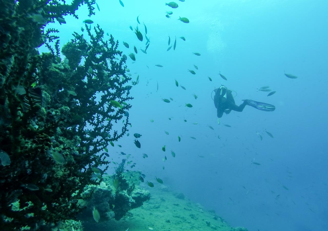 Vanuatu – Santo : Plongée & Canyoning