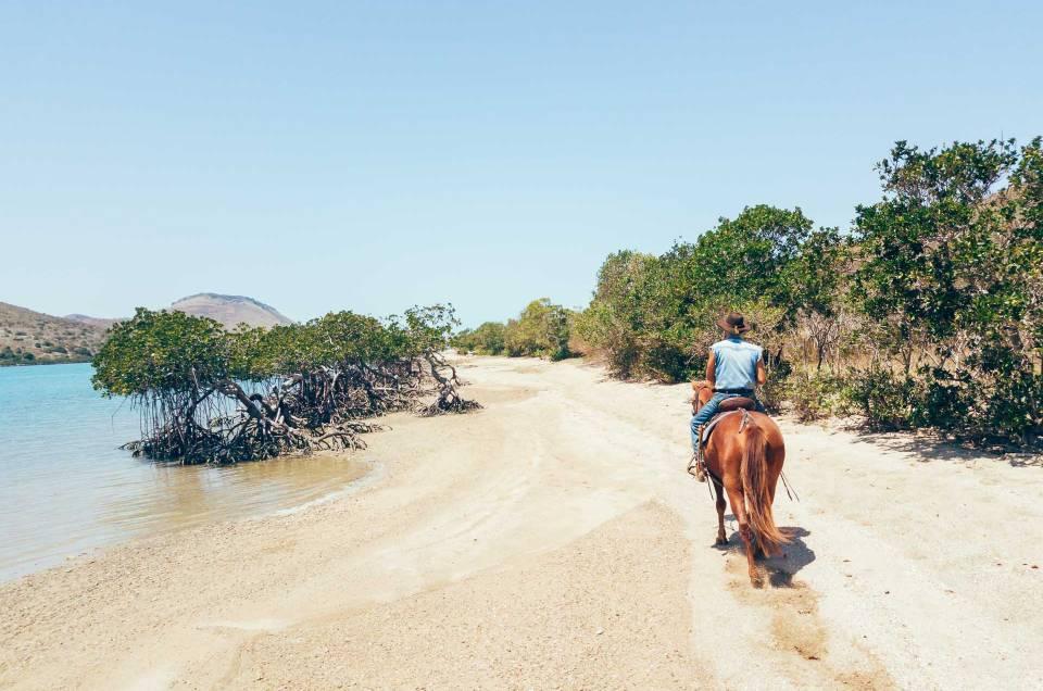 Randonnée équestre et camping à l'ilot Puen