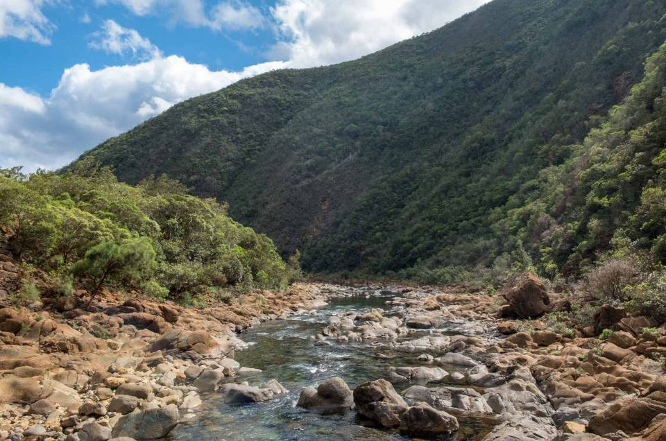 Randonnée : sentier de l'ancien barrage à Dumbéa